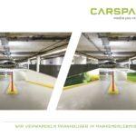Carspaze Vorher Nachher9