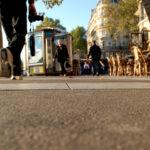 Paris-Froschperspektive24