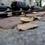 Paris-Froschperspektive6